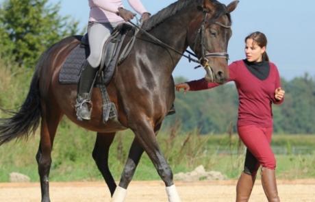Wesentlich für gutes Reiten ist ein ausbalancierter, losgelassener Reitersitz.